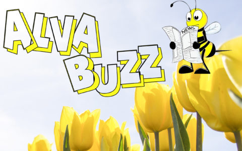 ALVA BUZZ Vol 19 Edition 3